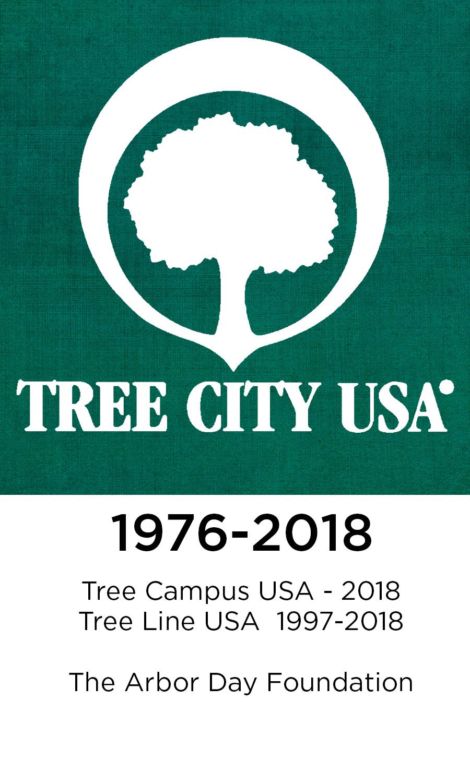 Tree City for web